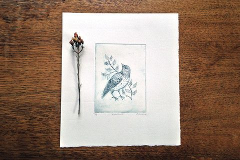 Woodlark Etching - Rosemary Milner