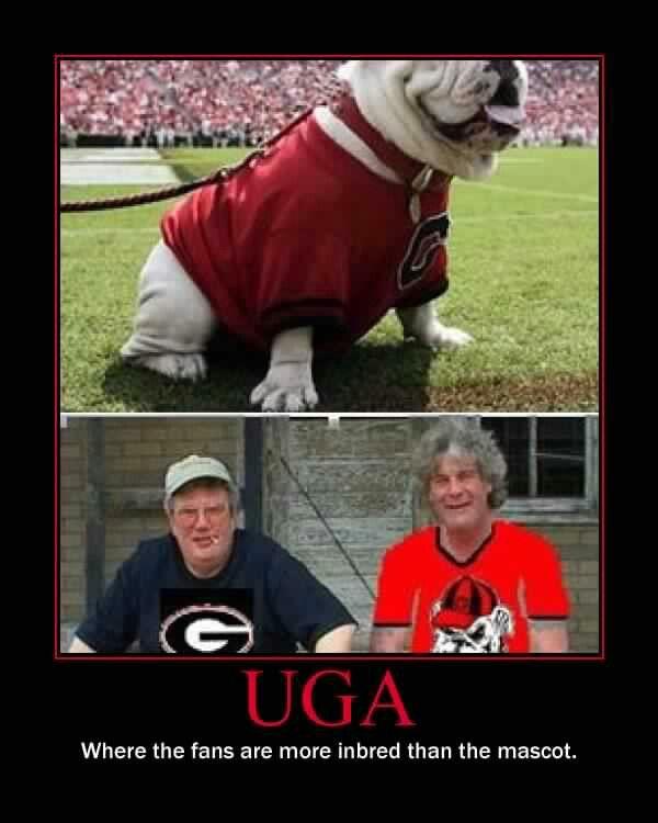 333813cb5270034ac93363ca3ff2c90c football memes florida gators 54 best georgia tech images on pinterest georgia, yellow jackets,Georgia Football Memes