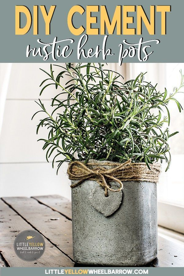 Make Your Own Diy Concrete Planters On The Cheap Diy Concrete Planters Concrete Pots Concrete Diy