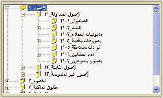 دليل الحسابات Chart of Account