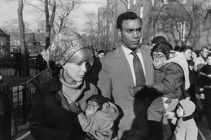 Central Park Zoo, 1967 from  The Estate of Garry Winogrand, courtesy of Fraenkel Gallery, San Francisco
