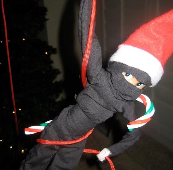 Ninja Elf!  Make costumes...Buddha would get a kick out of it if I could dress him as Kai.