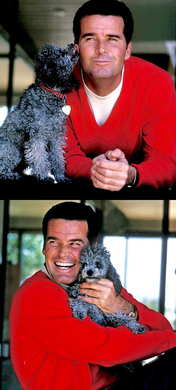 James Garner and his lovely grey poodle. matches the red sweater what do you remember special about Garner?