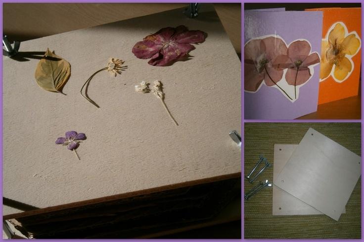 Pressing flowers by Alta priorità