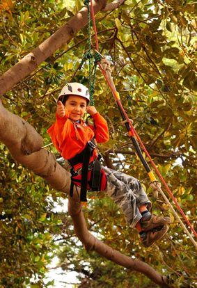 Tree Climbing con Eco Turismo Trekana