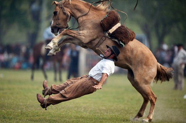 Гаучо падает с жеребца во время родео в Аргентине