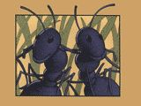 Teaching Point of View With Two Bad Ants