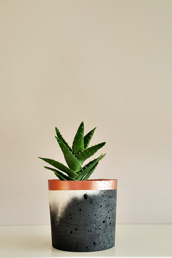 Small Concrete Pot Hand Made In Uk Made Of Concrete Mix And