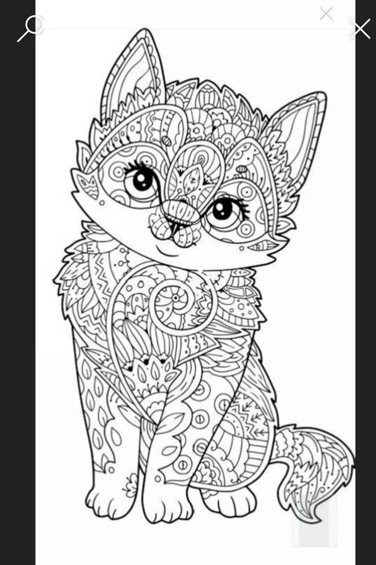 pinmaxi vötig on tiermandalas  dog coloring page cat