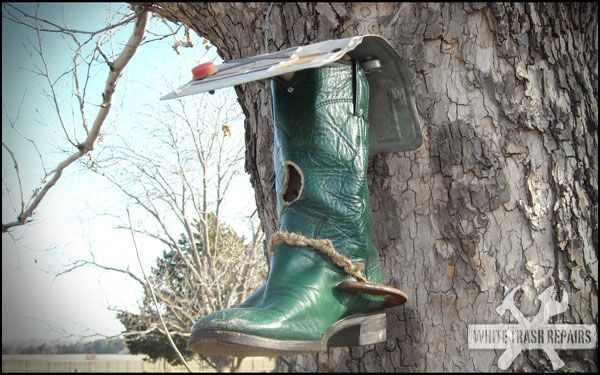perfect for a Texas bird