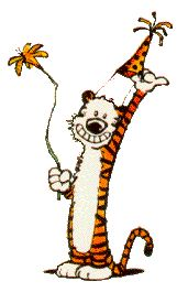 Pick it up!: Funetics -  wild tiger