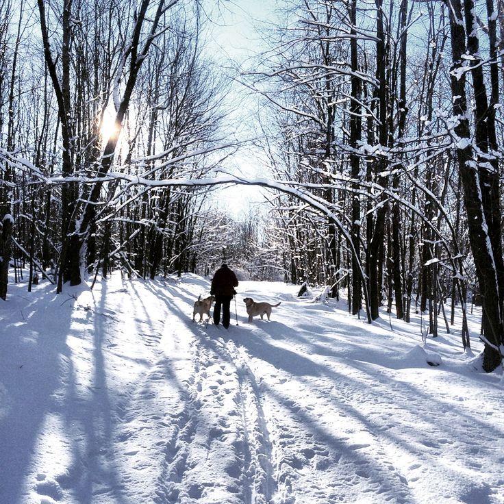 Outdoor Recreation: 8 Best Outdoor Recreation Images On Pinterest