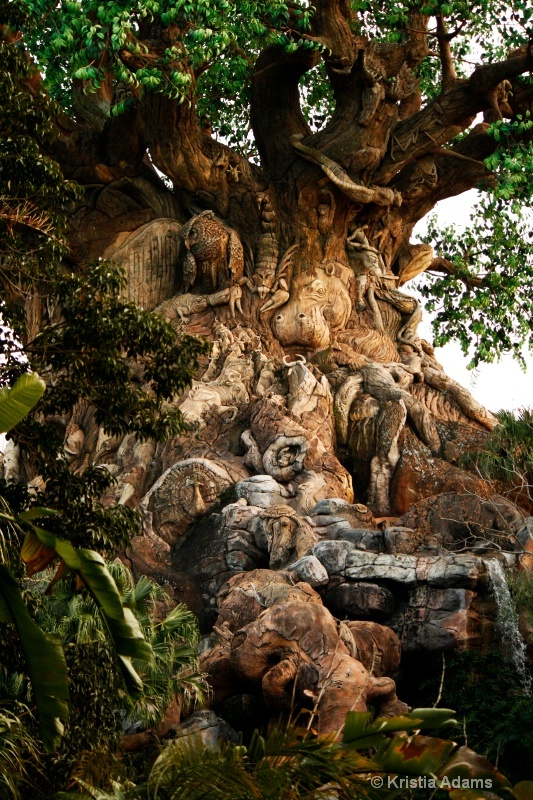 Walt Disney World - Animal Kingdom - Tree of Life... A MUST SEE!! This tree creation is AMAZING.. so many sculptures of animals literally ALL over it.