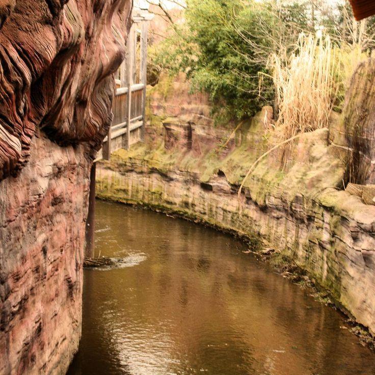 110 besten zoo leipzig pflanzen und tiere bilder auf for Pool garden leipzig