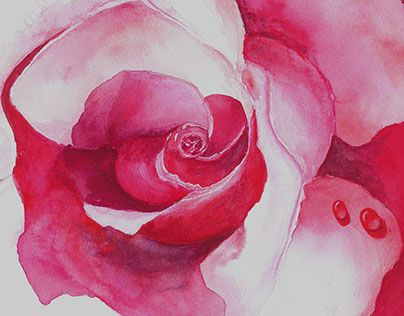"""Check out new work on my @Behance portfolio: """"Rose"""" http://on.be.net/1PVQntq"""