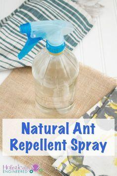 Natural Ant Repellent using Essential Oils #natural #essentialoils