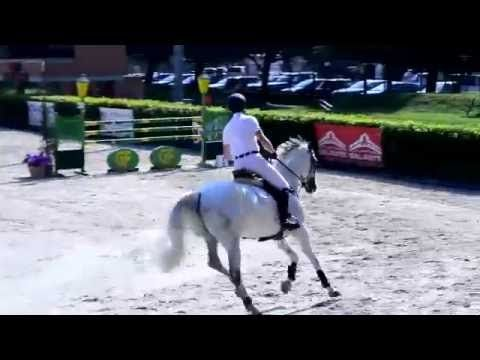 Gabriele Pina: Brindia - 1 posto - C140 a Fasi A5* - Gorla Minore 27.08....