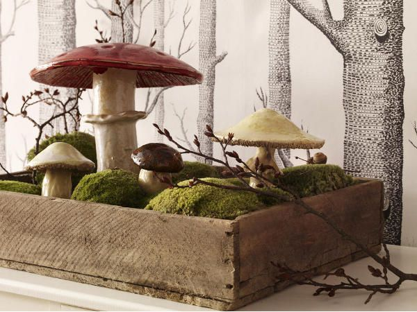 Fall Decoration: Moss and Mushrooms in Wooden Box