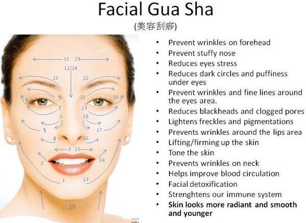 gua sha technique pdf book