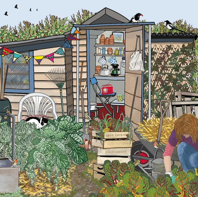'Allotment Time' By Graphic Artist Mig Wyeth. Blank Art Cards By Green Pebble. www.greenpebble.co.uk