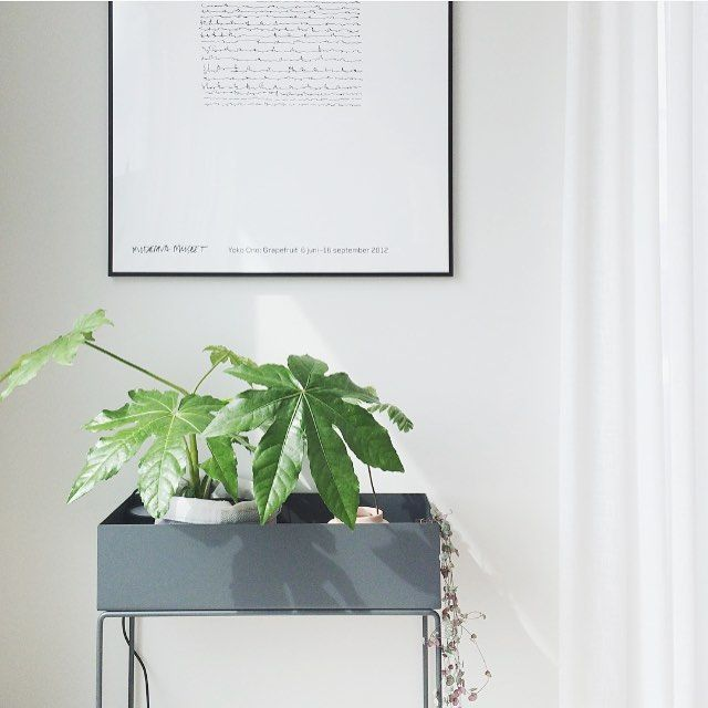 ferm living plant box in dark grey. Black Bedroom Furniture Sets. Home Design Ideas
