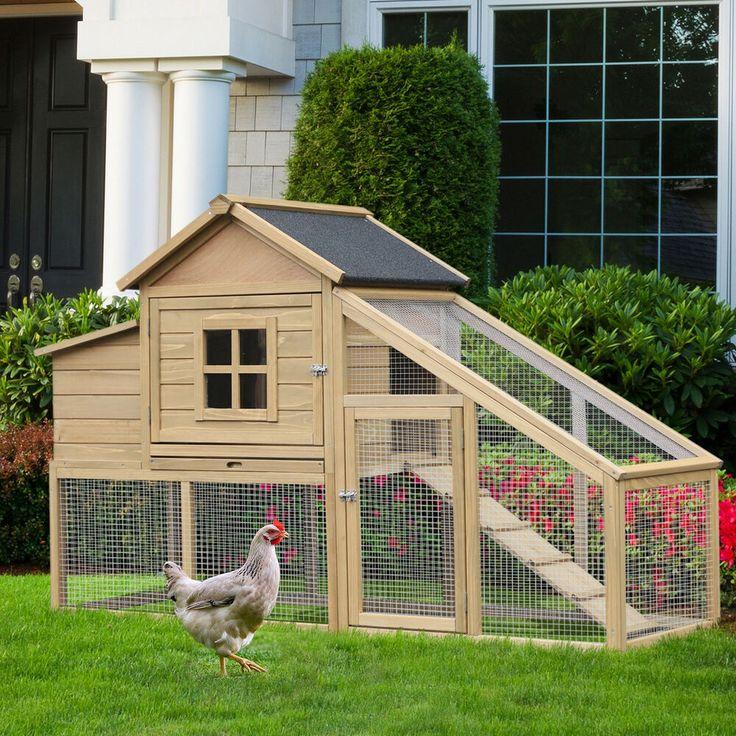 болезни состоит домик курица для зима и лето фото организациях ип, которых