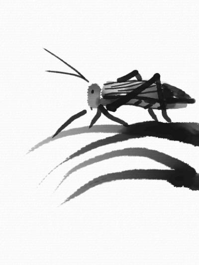 24 best sumi e painting images on pinterest chinese for Grasshopper tattoo supply