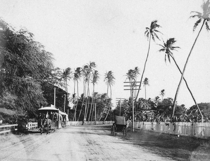 The Road To Waikiki Ca