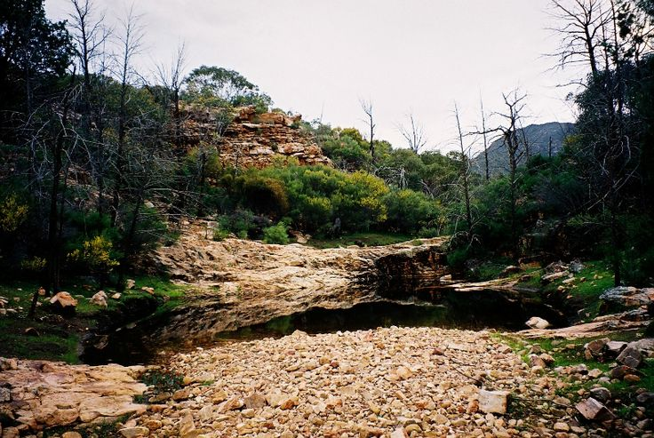 Allow us to tell you why visiting this natural amphitheatre is just so awesome! Wilpena Pound. Read our full itinerary.