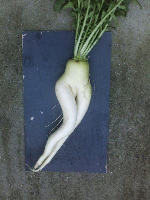 Sexiest daikon radish, ever.