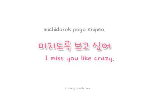 "Learn Korean: ""I miss you like crazy"""