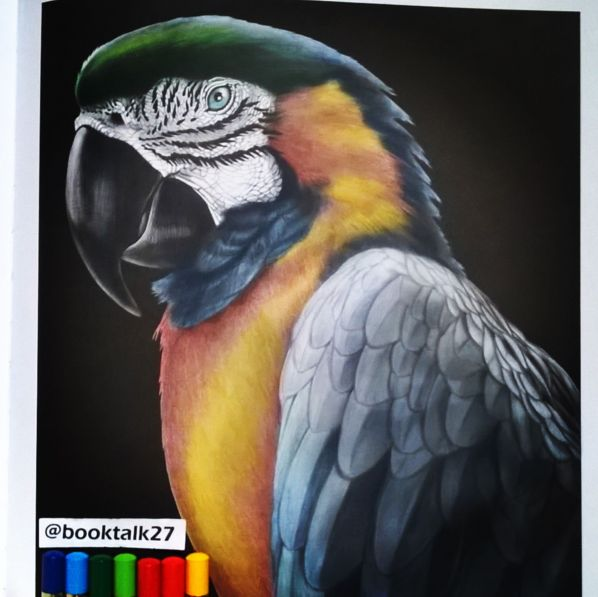 Macaw 2 By BookTalk27