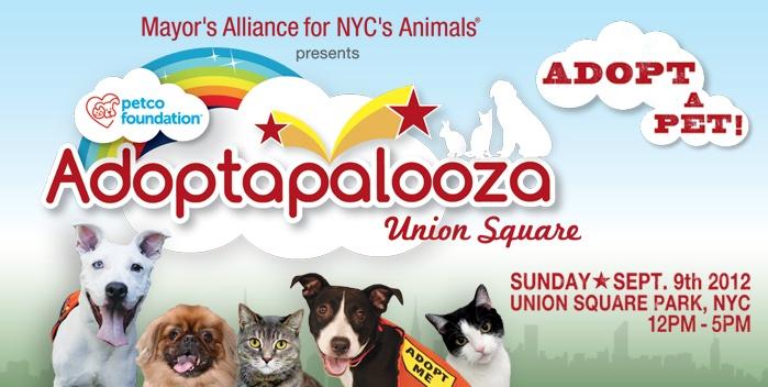 Sept 9th Adoptapalooza Union Square Pet adoption