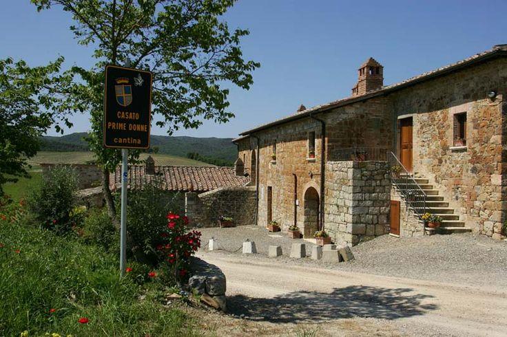 The production of Brunello di Montalcino at the Casato Prime Donne - Donatella Cinelli Colombini Tuscany Agritourism Farmhouse.  This is an all female-run operation.
