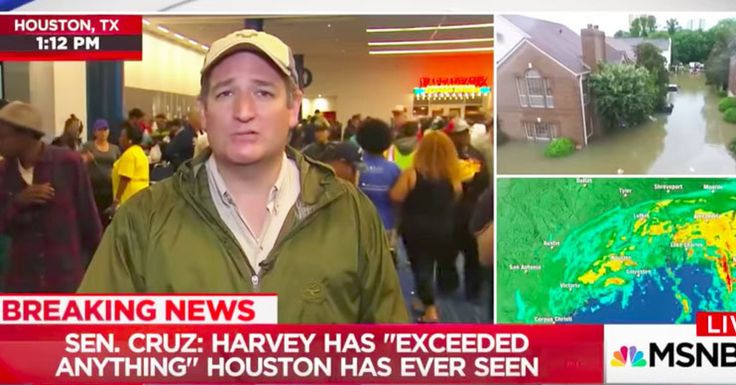MSNBC's Katy Tur Calls Out Ted Cruz's Hypocrisy For Opposing Hurricane Sandy Relief | HuffPost