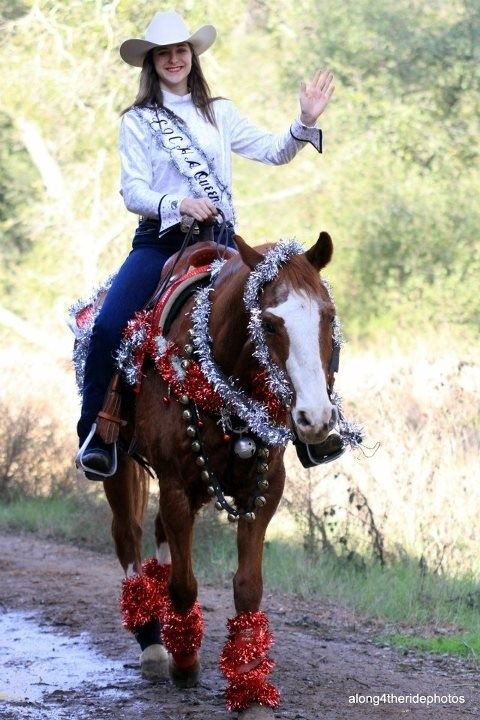 About horse costumes on pinterest costumes for horses arabian horse