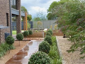 Low Maintenance Front Garden Ideas Australia 142 best australian gardens images on pinterest | landscaping
