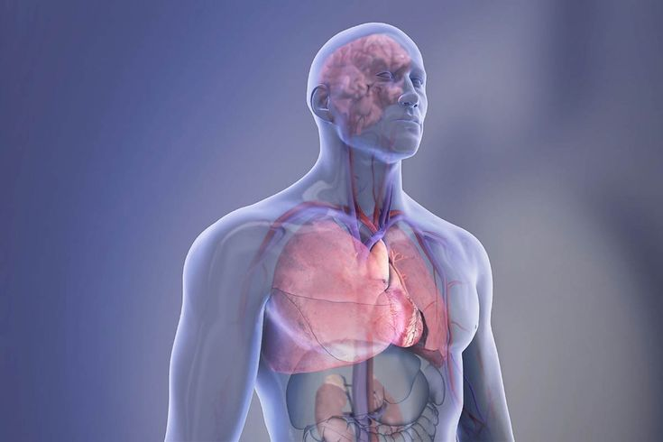 American Stroke Association says a usually-ignored finding in the Kidneys may signal Stroke Risk