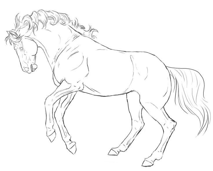 Rearing Horse Line Art By XXKincadesVanityXxdeviantart On DeviantArt Coloring PagesAdult