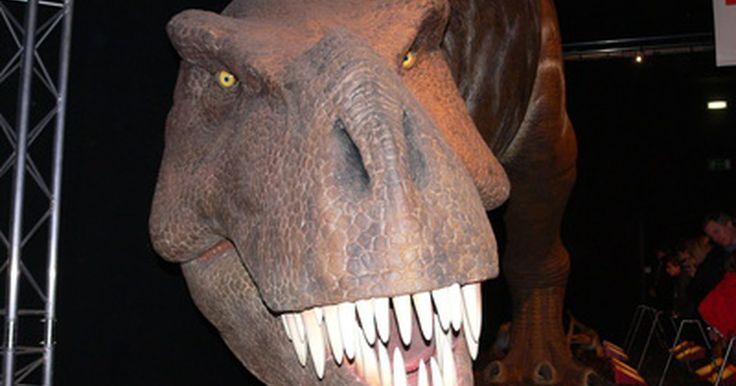Cómo hacer un dinosaurio de papel maché. Aunque es una completa lástima que el mundo carezca de dinosaurios vivos, puedes revivir un poco de esa época perdida con una réplica de papel maché. Hacer un dinosaurio de este material es un proyecto artístico divertido que puedes hacer solo o con tus amigos. Los niños también disfrutarán el aspecto creativo y desordenado de este proyecto ...