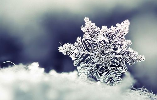 I <3 snowflakes!