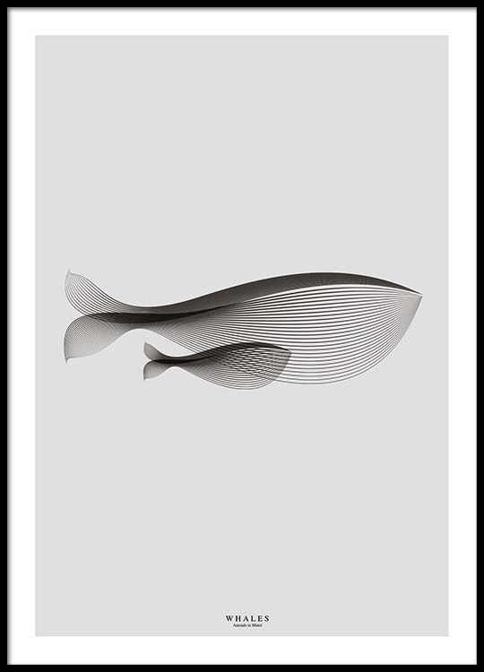 Whales in Moiré Poster i gruppen Posters  hos Desenio AB (3221)