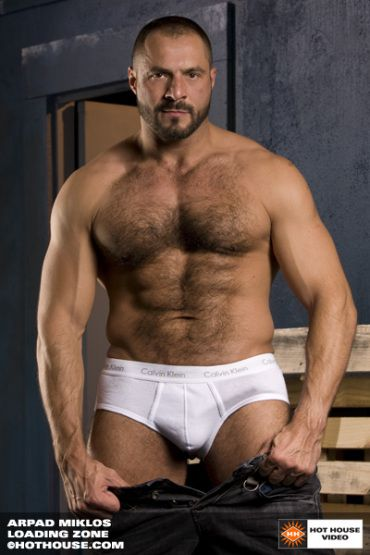 from Rayan gay bear myths