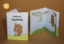 Minibook: Squirrels for the Squirrel Lapbook for children. More lapbook resources available at www.kigaportal.com!