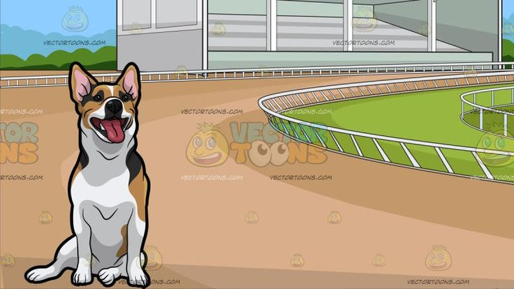 A Jack Russell Terrier Looking Attentive With A Horse Racing Track Background :   A dog with white brown short fur and small black spots black eyes nose looking relaxed and attentive while sitting on the surface mouth opened showing its deep pink tongue a