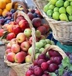 DRZEWKA OWOCOWE #drzewa #owocowe #owoce #ogród Sklep Internetowy Wysyłka gratis od 99zł http://www.sadowniczy.pl/pol_n_DRZEWKA-OWOCOWE-3347.html?utm_source=pucek&utm_medium=pin