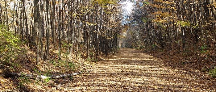 Gandy Dancer Trail going through wooded area. St. Croix Falls to Superior, WI