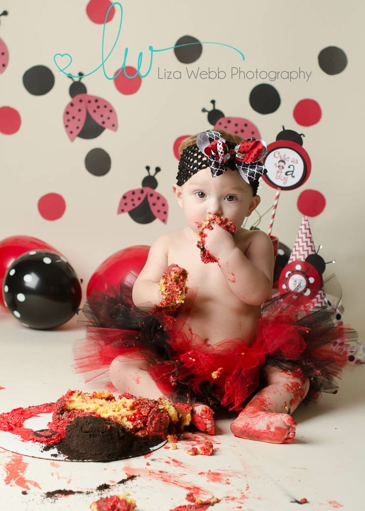 ladybug cake smash, cake smash, red and black, first birthday, ladybug, birthday girl, liza webb photography