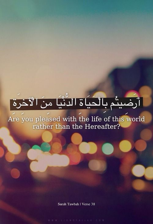 Quotes About Love Quran : Quran Quotes About Life. QuotesGram