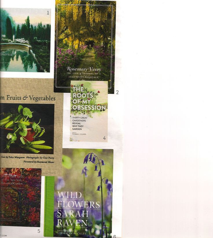 """Books to inspire ! 1.Gardens for a beautiful America,1895`1935 2.Barbara Paul.""""Rosemary Verey"""" 3.Clay Perry.""""Heirloom Fruits&Vegetables"""" 4.Toma Cooper.""""The Roots Of My Obsession"""" 5.Lary Lederman.""""Magnificient Trees of the NY Botanical Garden"""" 6.William Blake.""""Wild Flowers"""""""